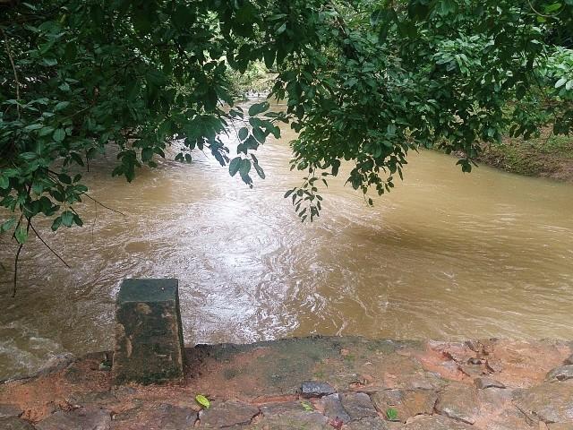 洪水で溢れそうな川
