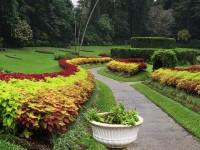 ペラデニア植物園