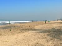 マウントラビニアの海岸
