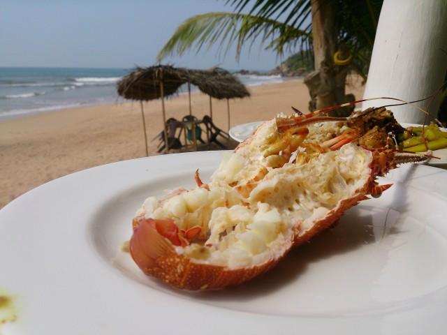 スリランカで食べたイセエビ